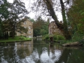 The Grove Mill