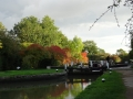 Autumn colours at Lock 15
